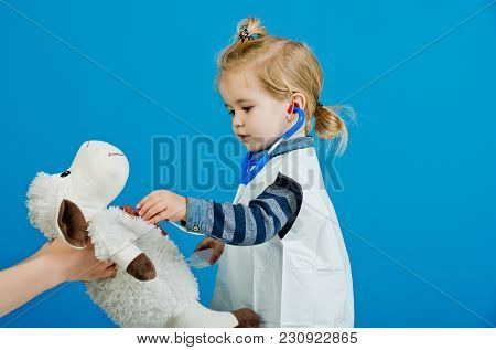 Health, Healthcare, Medicine. Child Doctor Examine Toy Pet With Stethoscope On Blue Background. Vete
