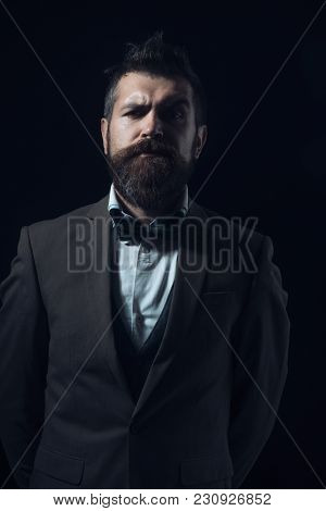 Guy With Concentrated Face In Luxury Classic Suit With Bow Tie. Hipster With Stylish Appearance Look