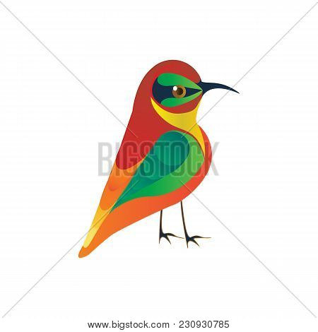Hummingbirds Meropidae Colibri Bright Plumage Isolated On A White Background Vector