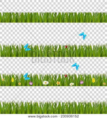 Green Realistic Grass Borders Set With Colorful Flowers And Butterflies Isolated On Transparent Back