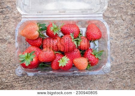 Loosely Laid Strawberries In Different Positions On Box