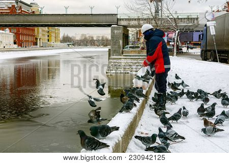 Man In Construction Helmet Feeds With Bread Crumbs Ducks And Pigeons On A River In Winter