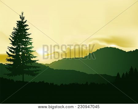 North American Landscape. Silhouette Of Coniferous Trees On The Background Of Mountains And Colorful