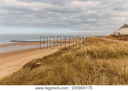 Grass dunes on the beach overlooking the sea