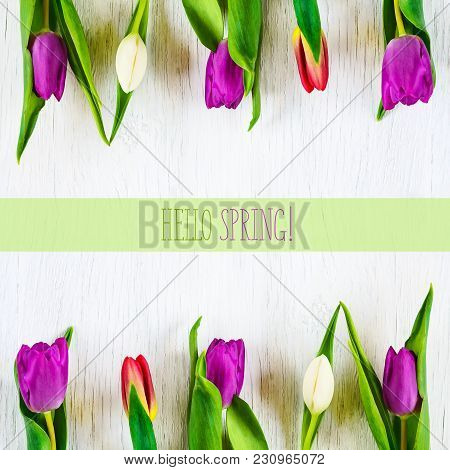 Beautiful Tulips Against White Wooden Background. The Inscription Hello Spring. Copy Space. Greeting