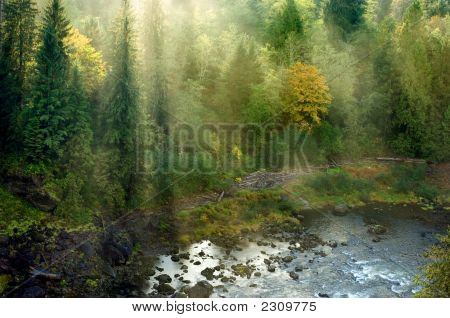 Northwestern Landscape