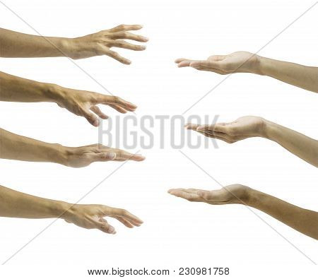 Set Of Hand Gesture Isolated On White Background With Clipping Path. Collection 7 In 1 Open Up Palm