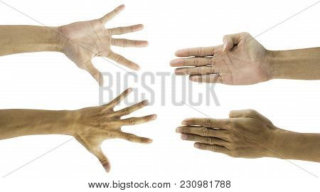 Man Hand Gesture Isolated On White Background With Clipping Path. 4 In 1 Front And Back Human Gestur