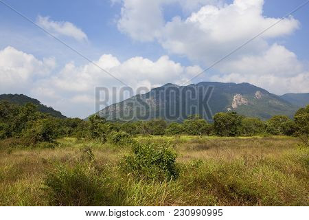 Sri Lankan Scenic Landscape At Ritigala With Mountains Woodland And Dry Grasses Under A Blue Sky Wit