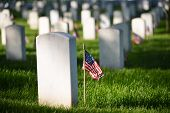 United States National flags ant headstones in National cemetery - Circa Washington DC USA poster
