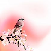 Red spring background with blossoming tree and small bird. Raster version. Vector version is in my gallery. poster