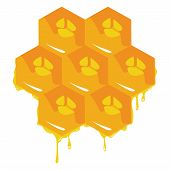 the orange background about honeycombs. Vector illustration poster