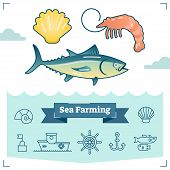 Sea Farming vector illustration collection with marine life elements. Illustrated seashell, shrimp, salmon and outline icon set. Aquaculture industry. poster