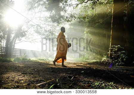 Monk Walking In Forest Morning Sunrise To Collect Alm