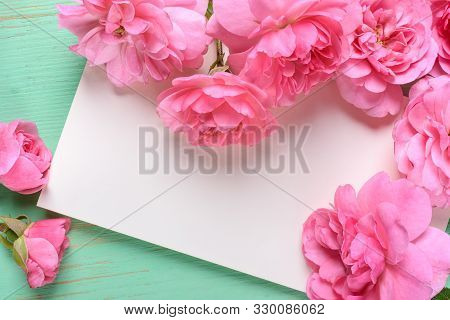 Flat View Of Card And Pink Rose On The Colour Background.