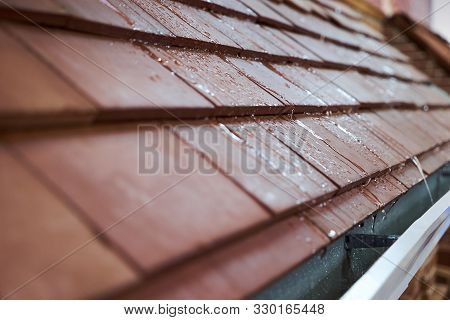 Wet Tile Roof Of The House, Close-up. Modern Tile Roof