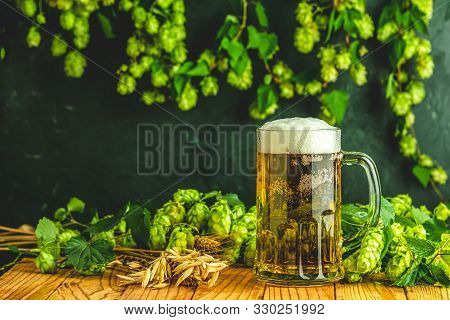 Beer And Hop Plant. Still Life With Beer And Hop Plant In Retro Style. Glass Of Cold Foamy Beer And