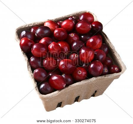 Closeup of a cardboard produce basket of fresh whole cranberries, isolated on white.