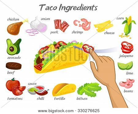 Taco Constructor With Different Ingredients