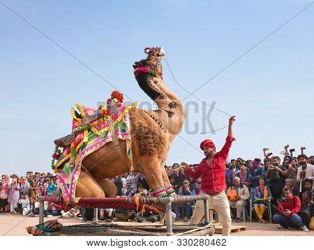 Bikaner, India - January 12, 2019: Camel Dancing During Camel Festival In Rajasthan State