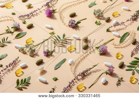 Herbal Medicine Or Natural Healing Herbs Supplements Concept