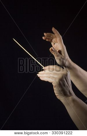 Female Hands Of An Orchestra Conductor On A Black Background
