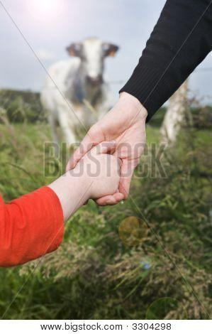 Little Girl Holding Hand