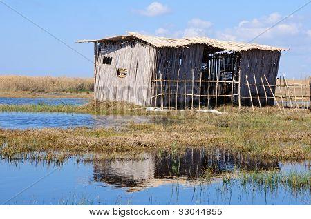 Poor Cane Abode On Rushy Lake Shore