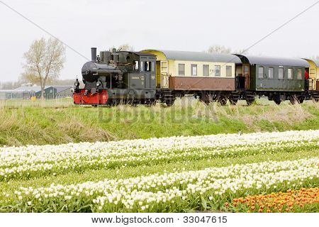 steam train, Hoorn - Medemblik, Noord Holland, Netherlands poster