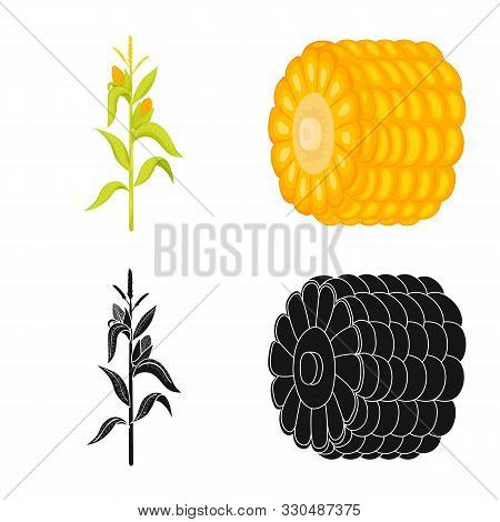 Vector Design Of Cornfield And Vegetable Logo. Collection Of Cornfield And Vegetarian Stock Vector I