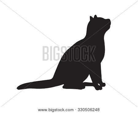 Vector Sitting Cat Silhouette Isolated On White Background
