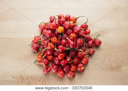 Red Australian Lantern Pepper Capsicum Chinense Little Rubber Nipple Bundle Wooden Background Organi