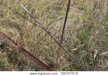 Barbed Wire To Protect The Perimeter Of The Land