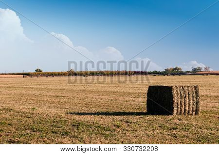 Hayfield With Bales Ready To Be Picked Up And Stacked