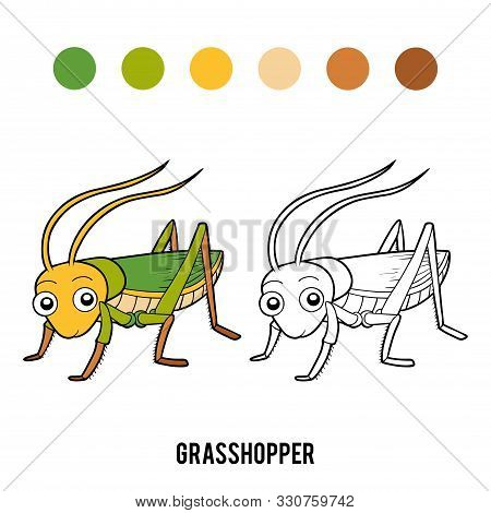 Coloring Book For Children, Cartoon Insect - Grasshopper
