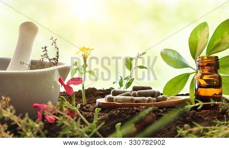 Elaboration Of Natural Plant Medicine With Mortar, Wooden Spoon With Capsules, Dropper Bottle And Pl