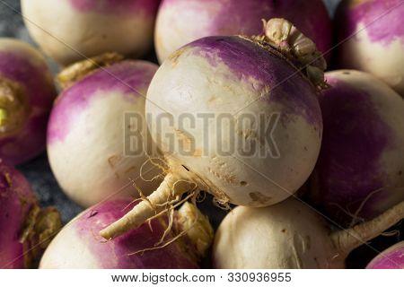 Raw Organic Purple Turnips