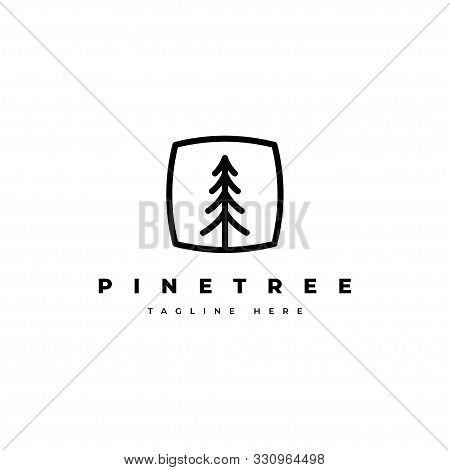 Pine Tree Logo Design Template.abstract Tree Icon