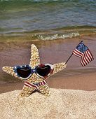 Patriotic starfish with bikini and American flag on the beach. poster