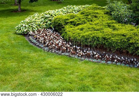 Garden Bed In Park With Plants Deciduous Flowers And Evergreen Bush In Flower Bed Near A Meadow With