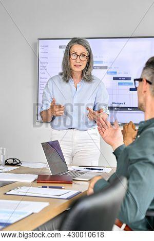Senior Mature Older Female Executive Ceo Presenter In Glasses Discussing Presentation Of Corporation