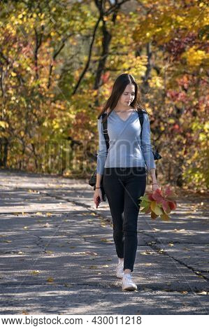 Beautiful Young Woman Is Walking Along The Alley Of The Autumn Park. Young Girl In The Forest. Verti