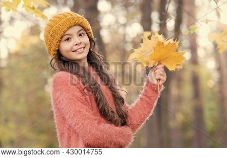 Time To Rest. Warm Clothes Fashion. Seasonal Weather. Childhood Happiness. Beauty Of Fall Nature. Ha