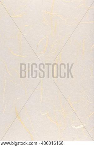 Thin Silk Fibers Decorative Paper Texture. Plant Fibre Hairs Decorated Paper Background. Portrait Ve