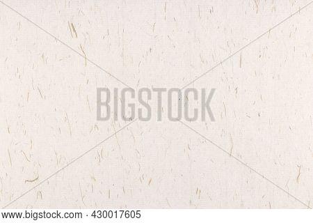 Plant Fibers Decorative Paper Texture. Decorated Rice Fragrance Paper Background. Landscape Horizont