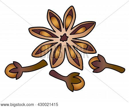 Star Anise And Cloves - Spices Vector Full Color Illustration. Spices - Star Anise And Cloves - Elem