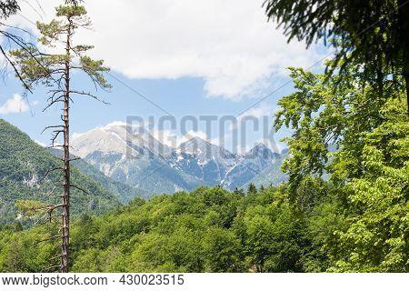 Triglav, Mali Draski, Tosc And Skrlatica Mounts In The Julian Alps, In Slovenia, By Bohinj, Surround