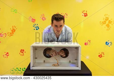 Blind guess game by touch . Man guesses by touch that he does not see in the box, Snake in the box. Happy birthday celebrating or games with friends concept