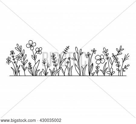 Vector Wild Herbs And Flowers Silhouette Background. Field With Grass And Wildflowers Isolated On Wh