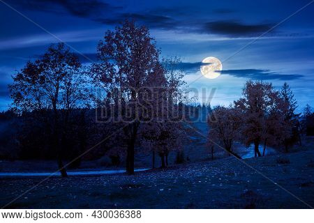 Autumn Countryside Scenery In Mountains At Night. Trees In Colorful Foliage By The Road In Full Moon